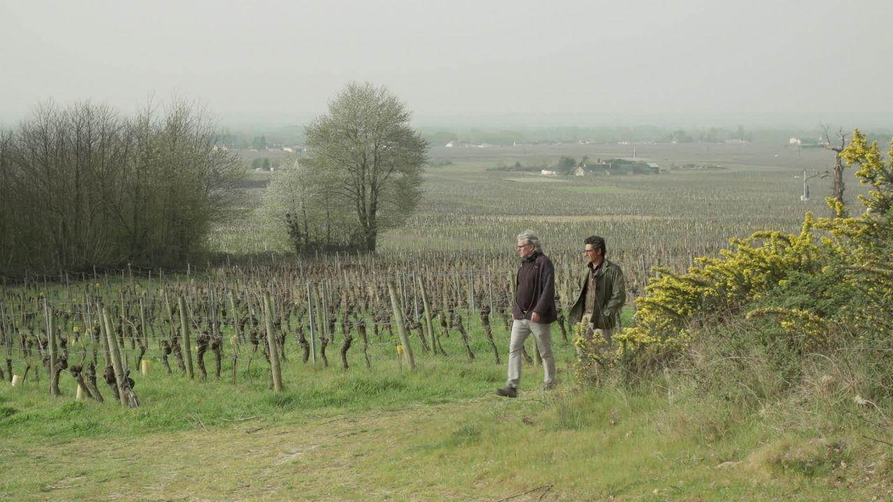 Le Pays de Bourgueil